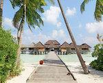 Gili Lankanfushi, Maldivi - potapljanje
